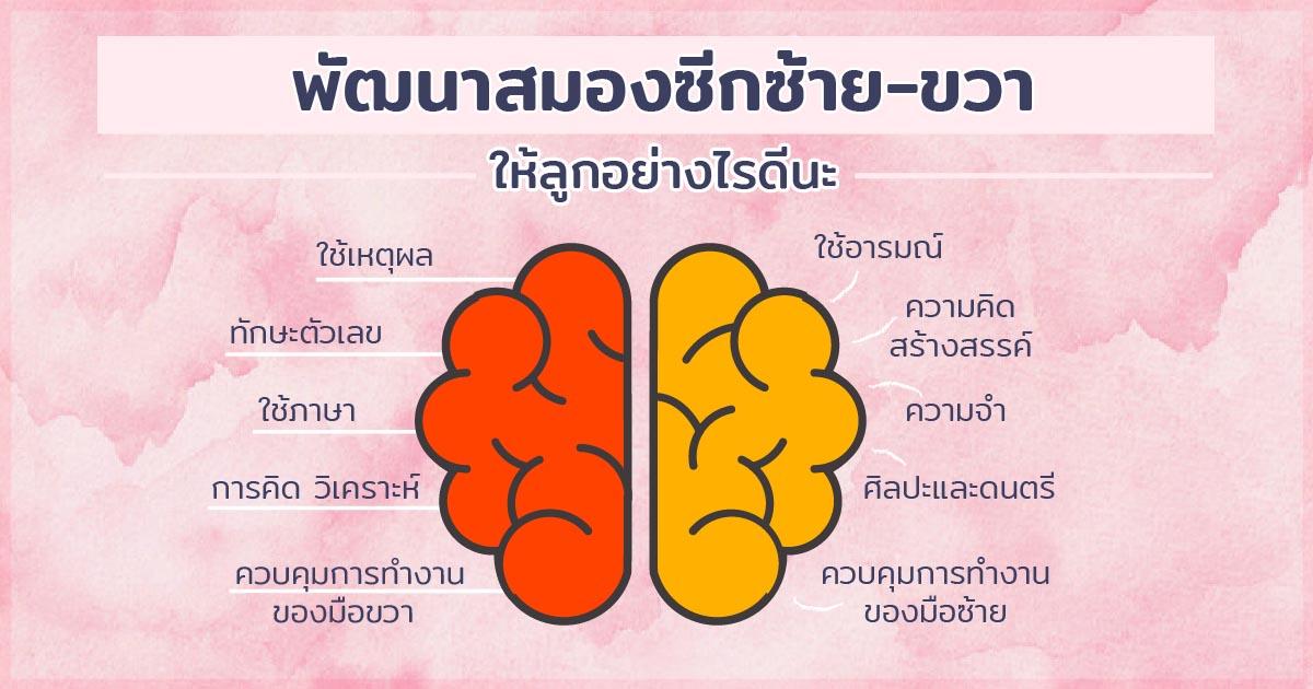 การทำงานของสมอง 2 ซีก ซ้ายและขวา